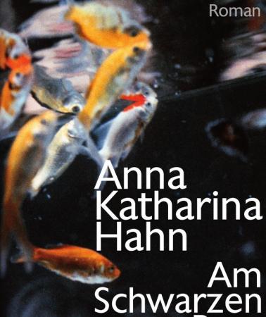 Am Schwarzen BergAnna Katharina Hahn